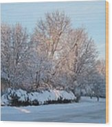 Snow Trees Sunrise 2-2-15 Wood Print