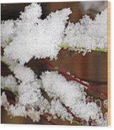 Snow Twig Abstract Wood Print