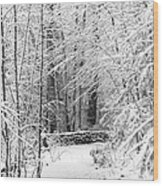 Snow Wall Wood Print