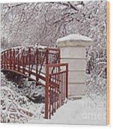 Snow Way Or No Way Wood Print by Irfan Gillani
