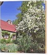 Snowball Tree In The Garden Wood Print