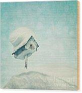 Snowbird's Home Wood Print by Priska Wettstein
