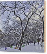 Snowboarders In Central Park Wood Print