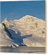Snowcapped Mountain, Andvord Bay Wood Print