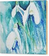 Snowdrops Wood Print