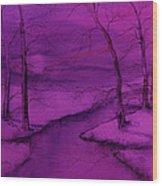 Snowed In IIII Wood Print
