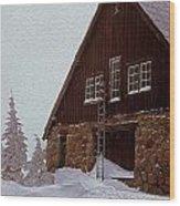 Snowed In Wood Print
