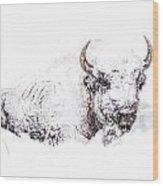 Snowed-in Wood Print