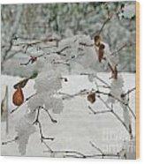 Snowed Under Wood Print