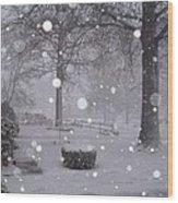 Snowfall On Ayers Wood Print