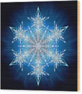 Snowflake - 2012 - A Wood Print by Richard Barnes