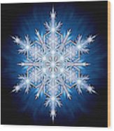 Snowflake - 2013 - A Wood Print by Richard Barnes