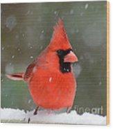 Snowflake Cardinal Wood Print