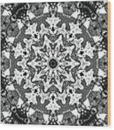 Snowflake Wood Print by Dan Sproul