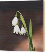 Snowflake Flowers Wood Print