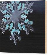 Snowflake In Window 20471 Wood Print