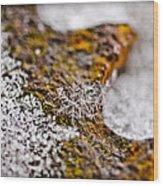 Snowflake On Rust Wood Print