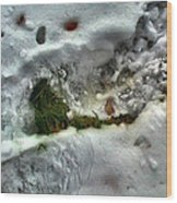 Snowgrassleafcomp 2009 Wood Print
