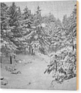 Snowing At The Forest Wood Print