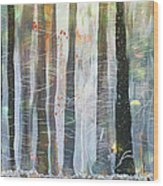 Snowing In The Ice Forest Wood Print