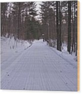 Snowmobile Trail Wood Print