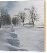 Snowscape Wood Print by Patricia McKay