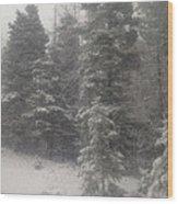 Snowscape Taos Wood Print