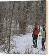 Snowshoeing In The Park Wood Print