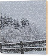 Snowstorm Coming Wood Print by Beverly Guilliams