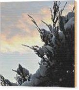 Snowvember Sunrise Wood Print