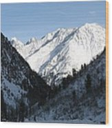 Snowwhite Mountain Top Wood Print