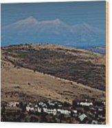 Snowy Arizona Peaks And Prairie Hills Wood Print