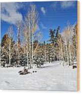 Snowy Aspen Grove Wood Print