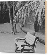 Snowy Bench Wood Print