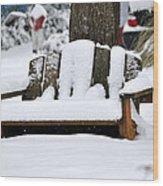 Snowy Bench Wood Print