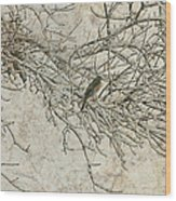 Snowy Bird Wood Print