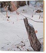 Snowy Blanket Wood Print