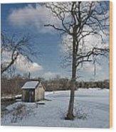 Snowy Bog House Wood Print