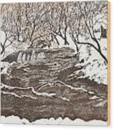 Snowy Creek Wood Print by Leo Gehrtz