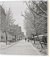 Snowy Day In Madrid Wood Print