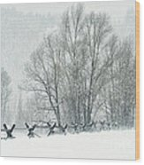 Snowy Day In The Tetons Wood Print