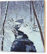 Snowy Day Wood Print