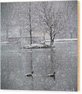 Snowy Day On The Island Wood Print