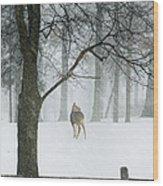 Snowy Deer Wood Print