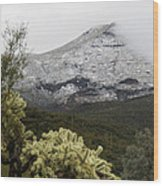 Snowy Desert Mountain 1 Wood Print