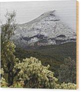 Snowy Desert Mountain Wood Print
