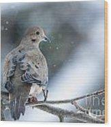 Snowy Dove Wood Print