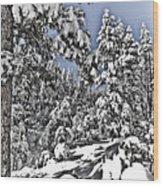 Snowy Dreams  Wood Print