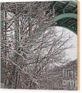 Snowy Drive Wood Print