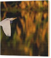 Snowy Egret Climbing Up To The Sky Wood Print by Andres Leon